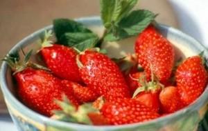 13 La fraise de Nîmes
