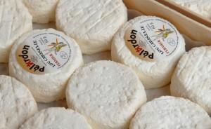 8 le Pélardon fromage de chêvre